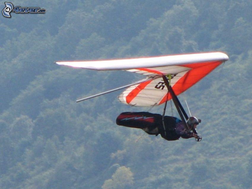 Rogallo-Flügel