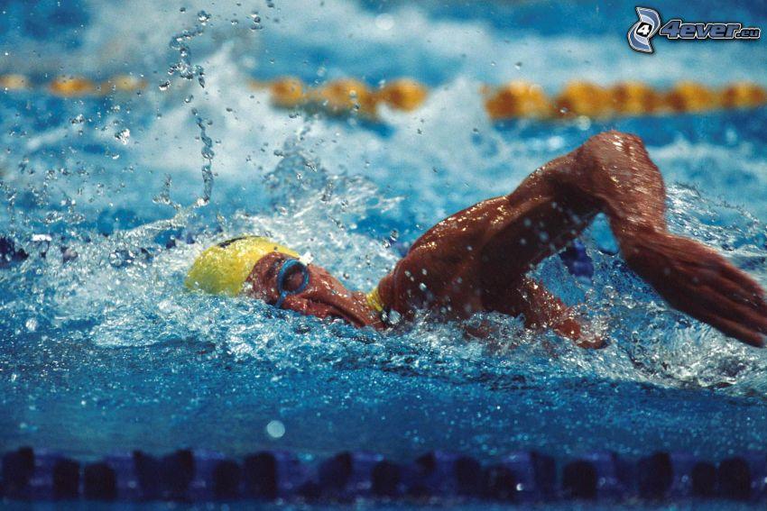 Schwimmer, schwimmen