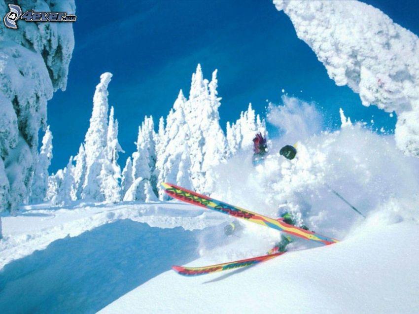Extrem-Skifahren, Unfall, verschneite Bäume
