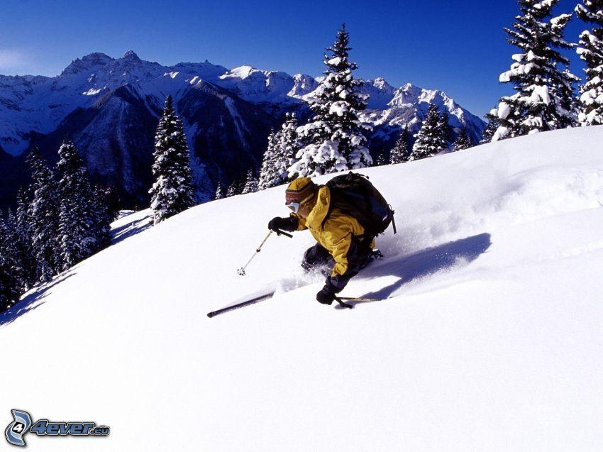 Extrem-Skifahren, verschneite Bäume, schneebedeckte Berge