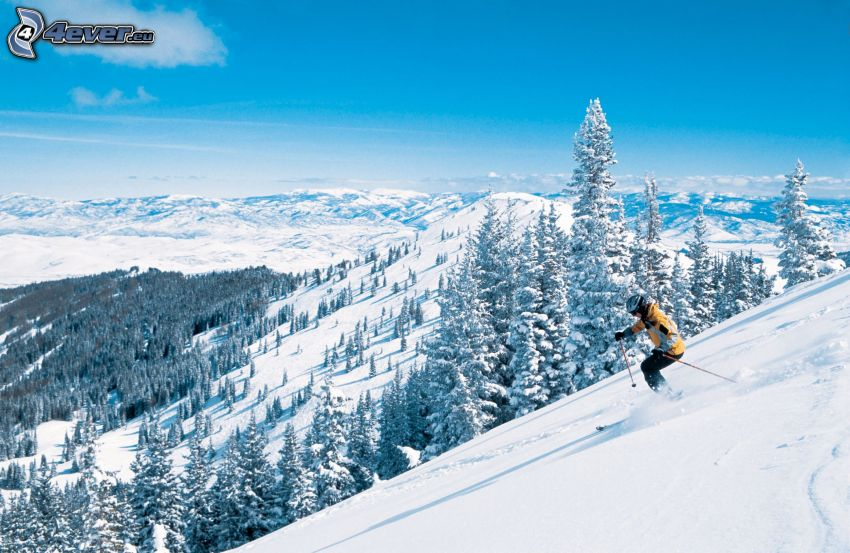 Skifahren, schneebedeckte Berge, verschneite Bäume