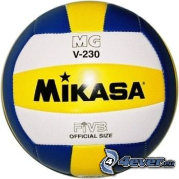 Volleyball, Ball