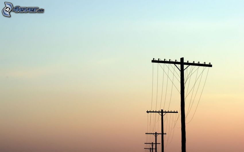 elektrische Leitung