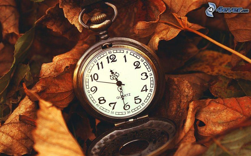 historische Uhr, trockene Blätter