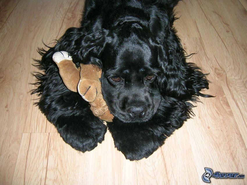 Hund auf dem Boden, schwarzer Hund, Kuscheltier, Trauer