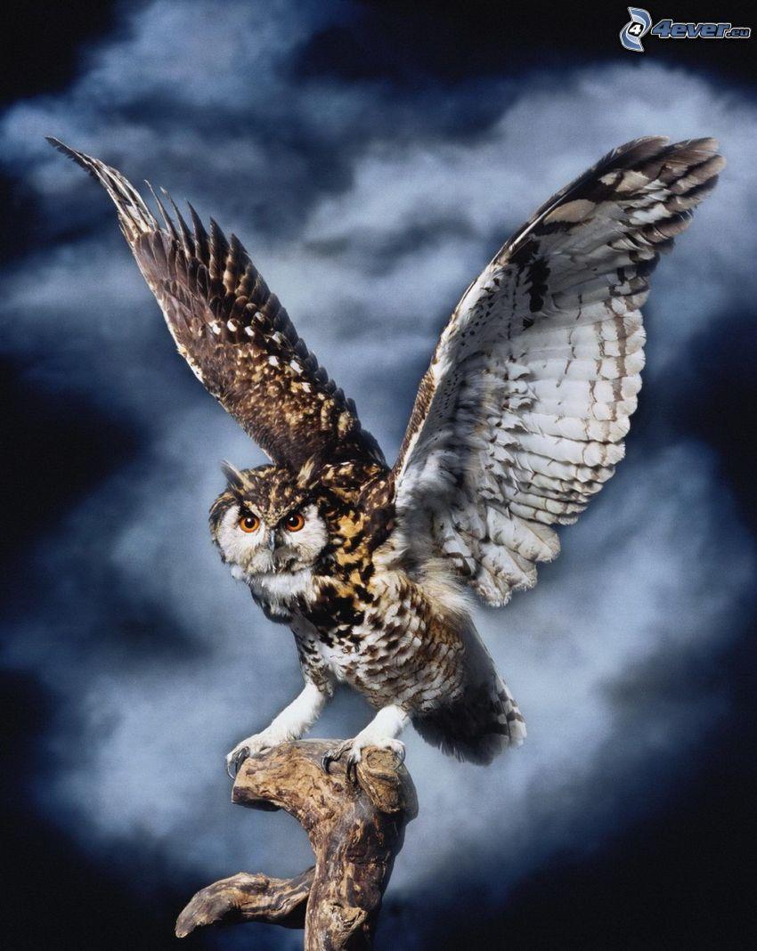 uhu, Flügel, Holz