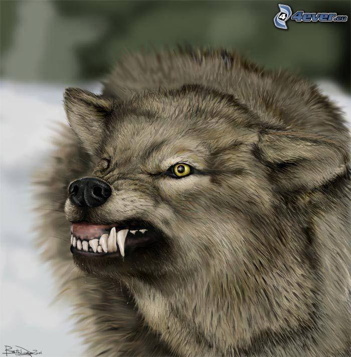 böser Wolf, Fangzähne