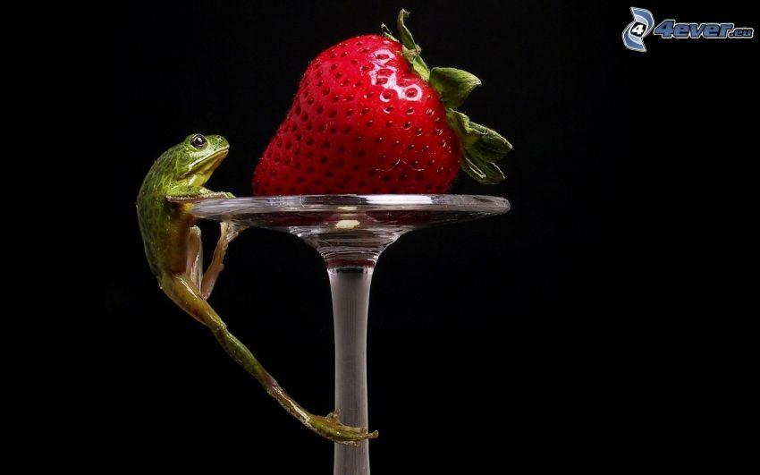 Frosch, Erdbeere, Tasse