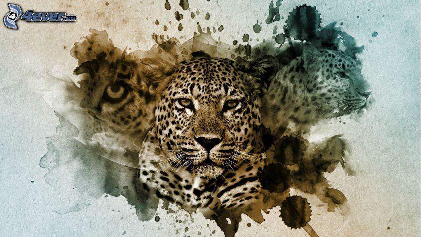 Leopard, Kleckse