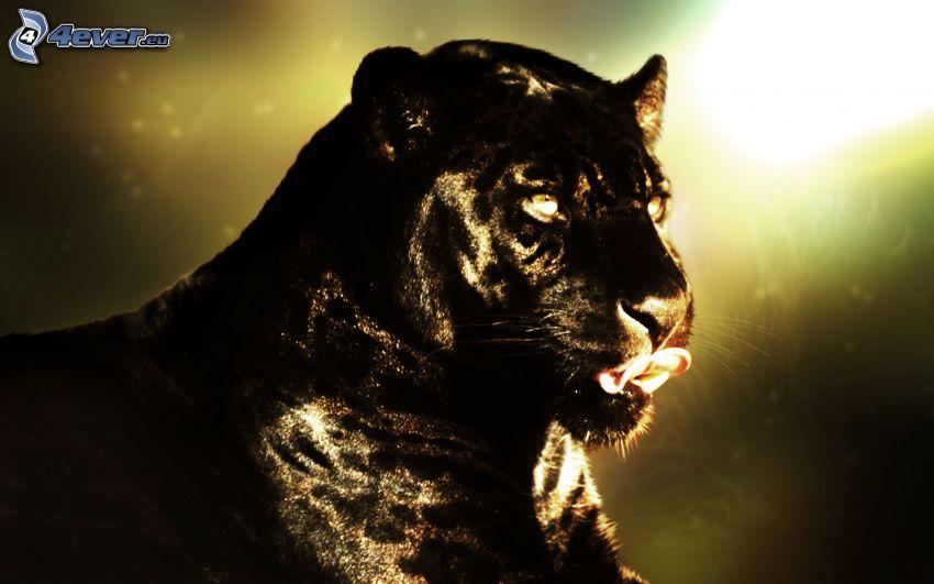 Panther, hängende Zunge