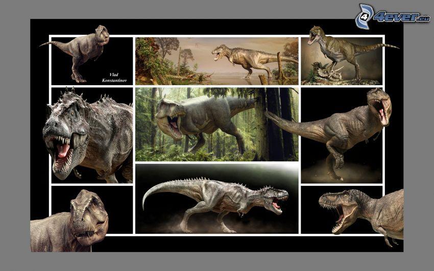 Tyrannosaurus, Dinosaurier