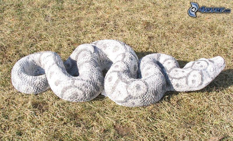 Weiße Schlange