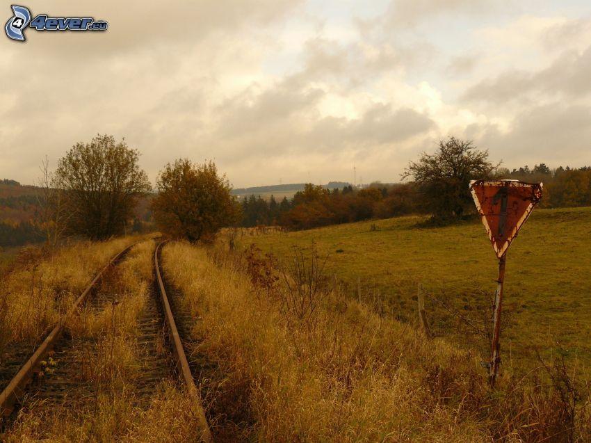 alten Schienen, Verkehrszeichen, Bäume