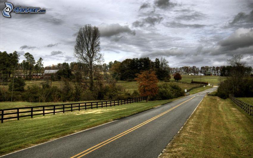 Straße, Holzzaun, Wiesen, Bäume, Himmel, USA