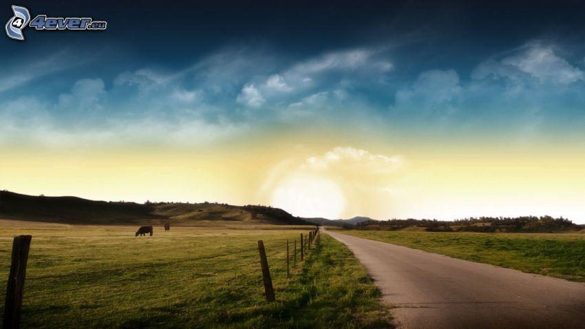Straße, Wiesen, Himmel, Zaun