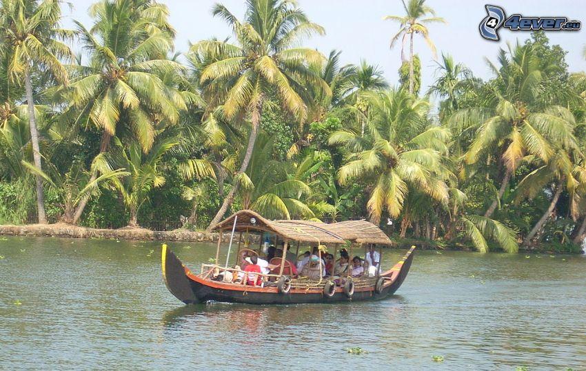 touristisches Schiff, Palmen, Fluss