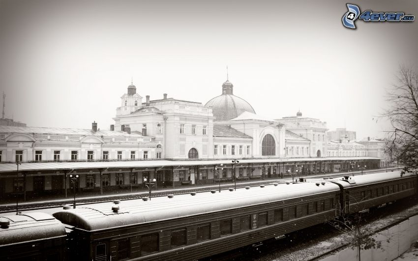Bahnhof, Züge