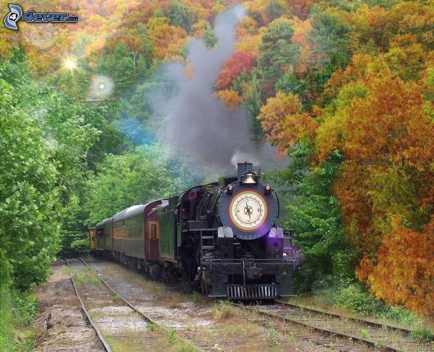 Dampflokomotive, herbstlicher Wald