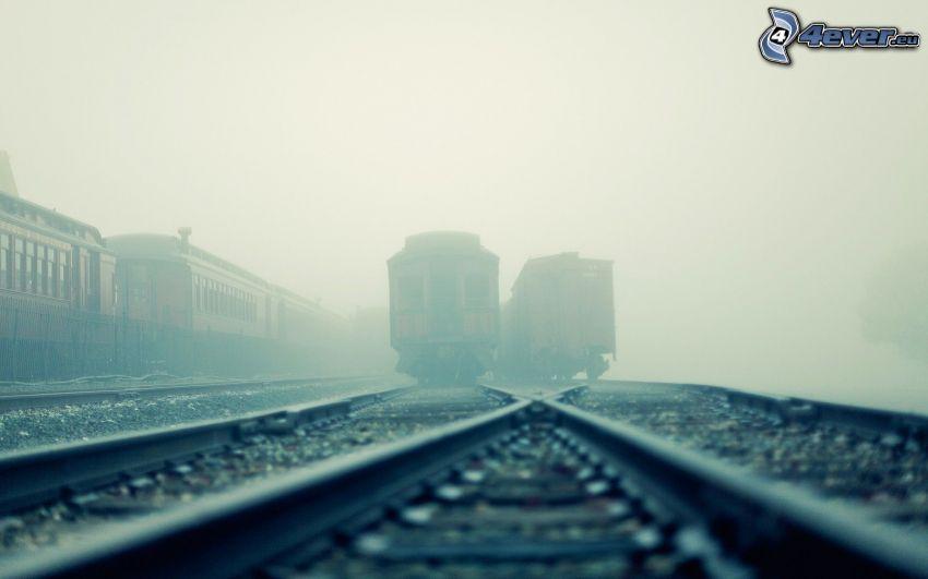historische Waggons, Schienen, Nebel