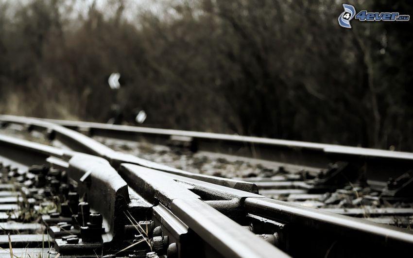 Schienen, Eisenbahnweiche