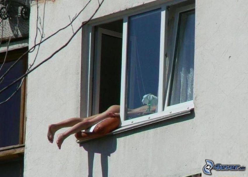 Sonnenbad, Fenster