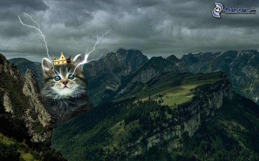 Katze, Blitze, Krone, felsige Berge, Gewitterwolken