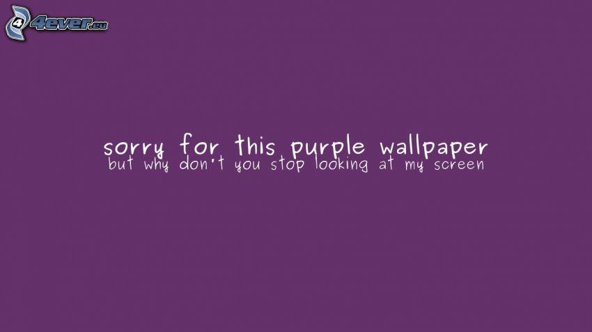 violett Hintergrund, wallpaper