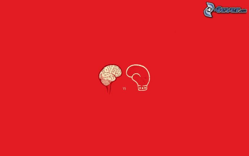 Gehirn vs Stärke, Kampf
