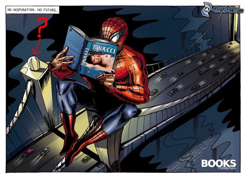 Spiderman fail, gay, Brücke, Cartoon