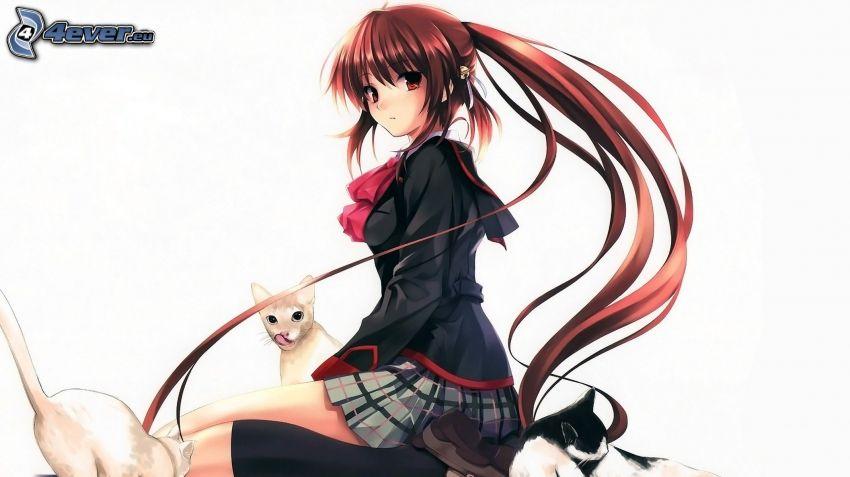 Anime Mädchen, langes Haar, Katzen