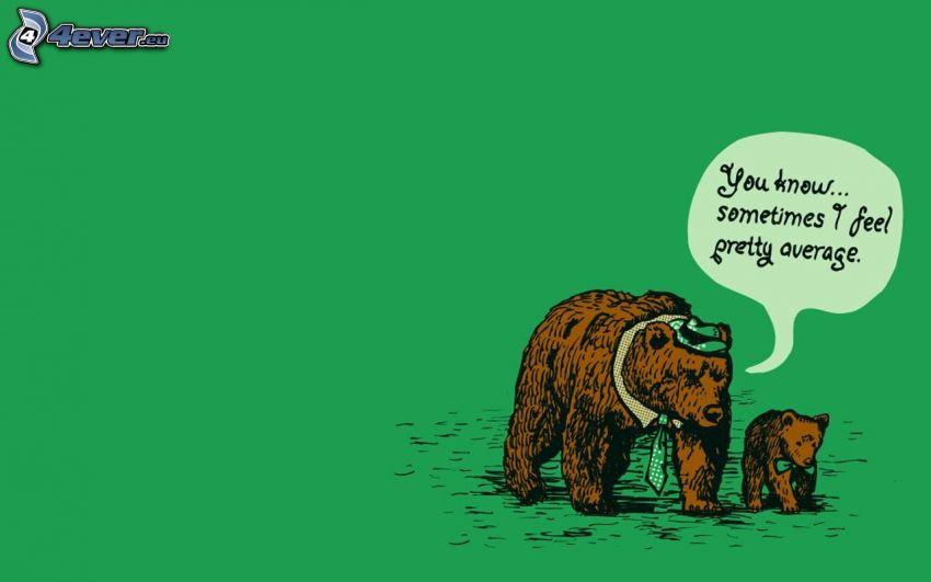 Bären, Jungtier, text, Krawatte, Hut, Querbinder