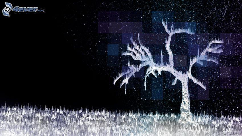Baum, Nacht