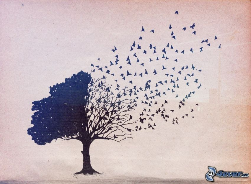 Baum, Vogelschwarm