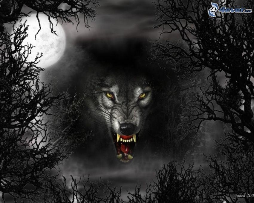 schwarzer Wolf, Mond, Wald