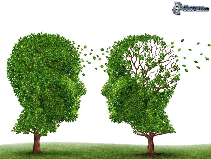 Bäume, Köpfe, grüne Blätter, Gras