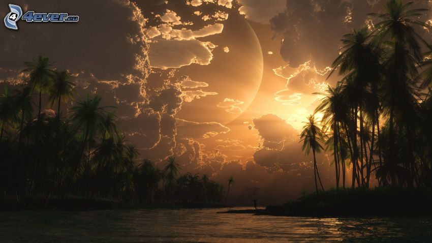 digitale Landschaft, Fluss, Sonnenuntergang, Wolken, Palmen
