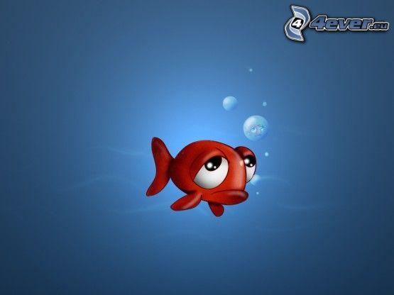Fisch, Trauer, Blasen