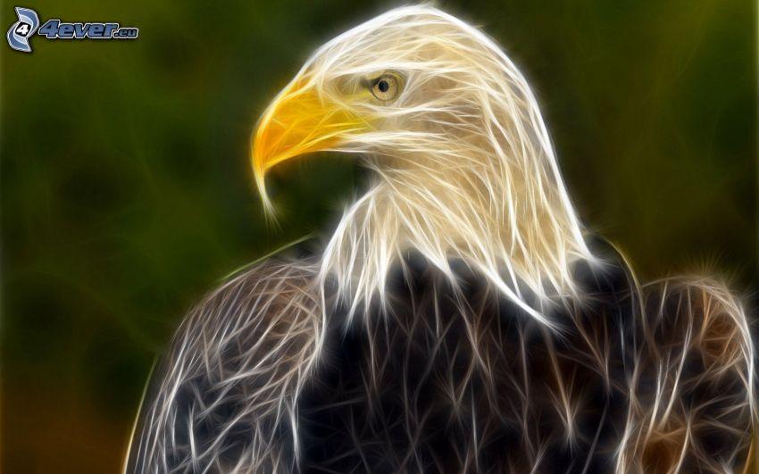 fraktale Adler