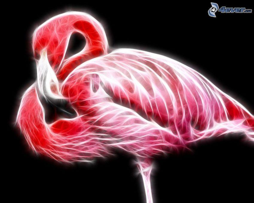 fraktale Flamingo