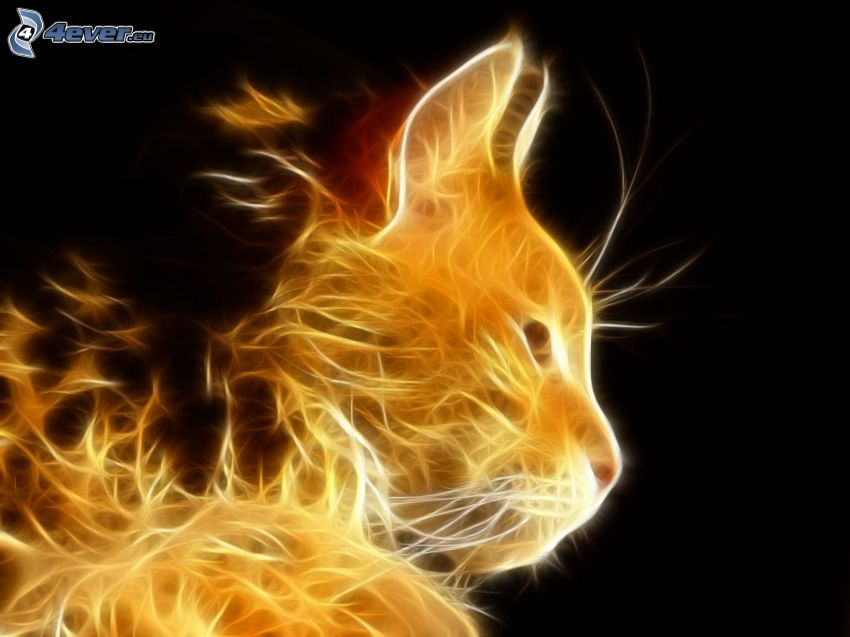 Fraktale Katze