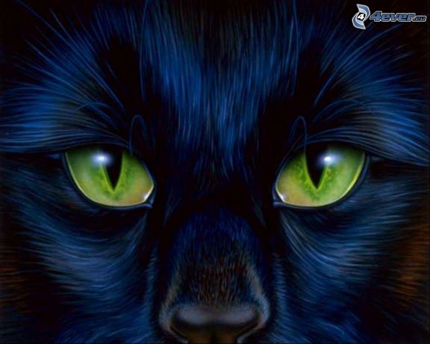 Gesicht der schwarzen Katze, Grüne Katzenaugen, cartoon-Katze