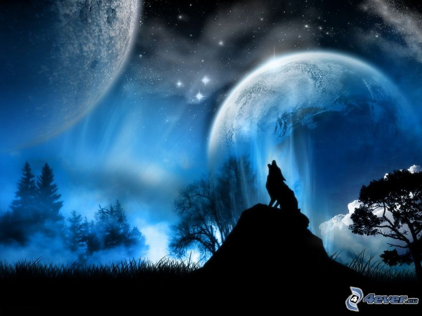 gezeichneter heulender Wolf, zwei Monde, Nacht, Wald, Natur, Sternenhimmel