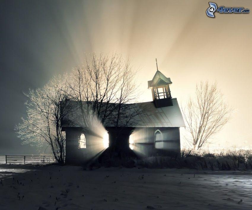 Kirche, Licht, Baum