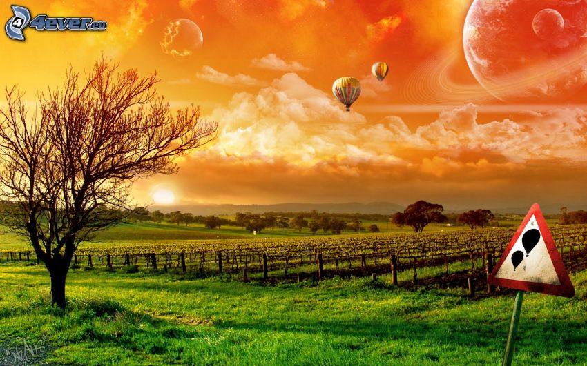 Landschaft, Luftballons, Schild, Weinberg
