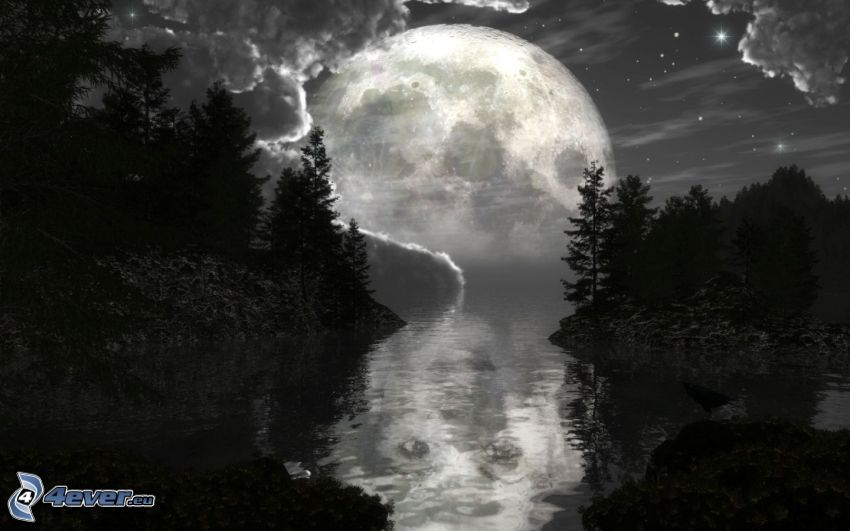 mond über der Spiegelfläche, Landschaft, Fluss, Wald, Bäum Silhouetten