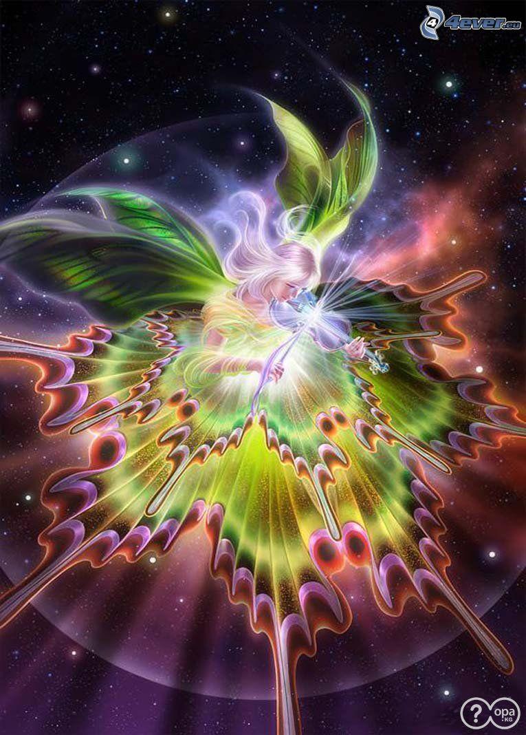 Musiker, Violine, Schmetterling, Universum, Musik
