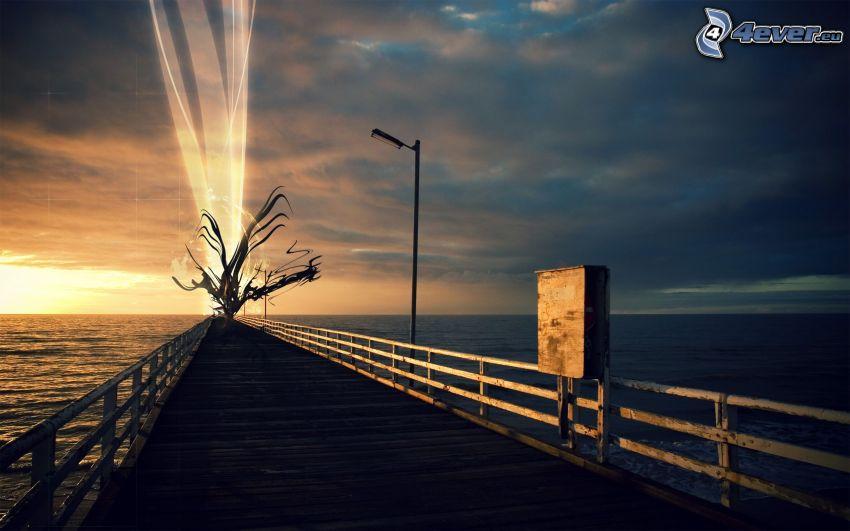 Pier, trockener Baum, Glut, Meer
