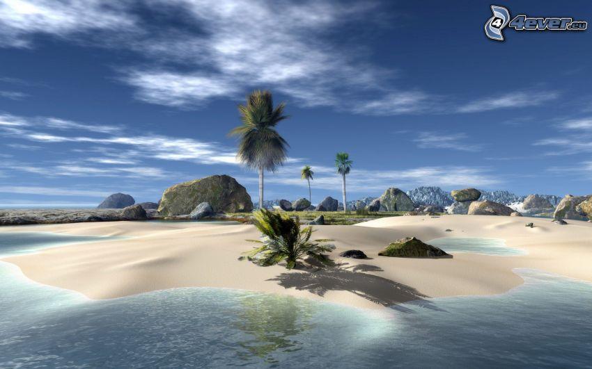 Sandstrand, Palmen am Strand, Meer, Felsen