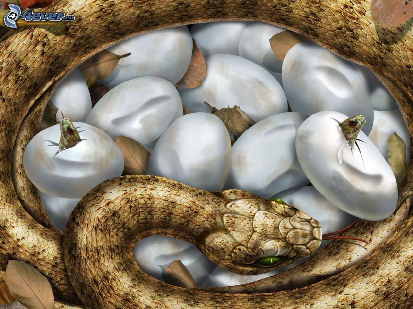 Schlange, Jungtiere, Eier