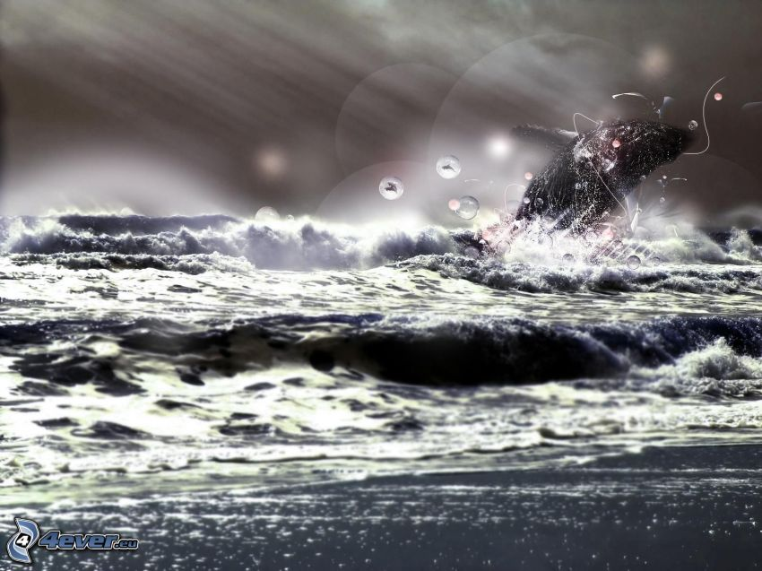 Wal, stürmisches Meer